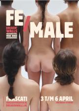 Affiche van FE/MALE van festival Breakin' Walls.