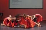 Audities Voorbereidingsklassen Stardance Studio's