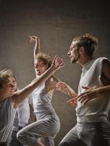 Dansateliers. Foto Ton van Til