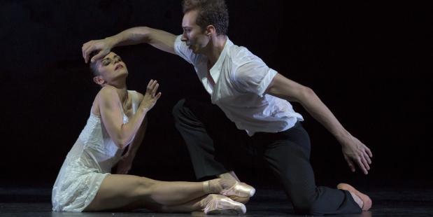 Duits Zwanenmeer, Ballet