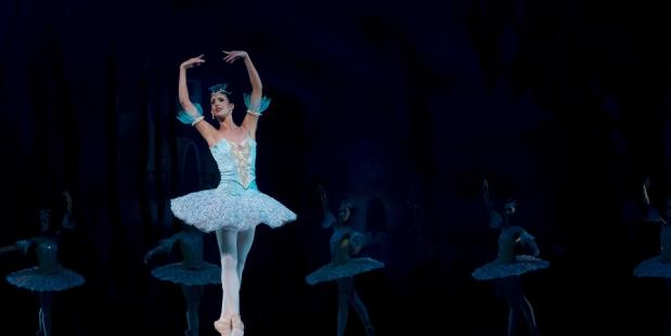 notenkraker ballet muizenkoning