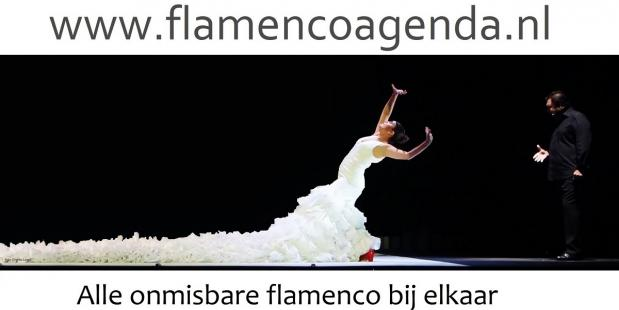 Flamenco is dé uitdaging voor iedere danser