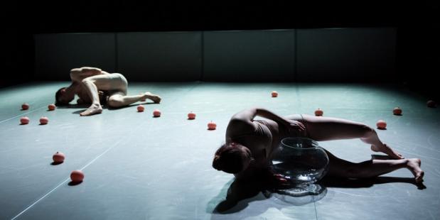 It's all about the third nipple - Collectief dOFt. © Anna Van Kooij