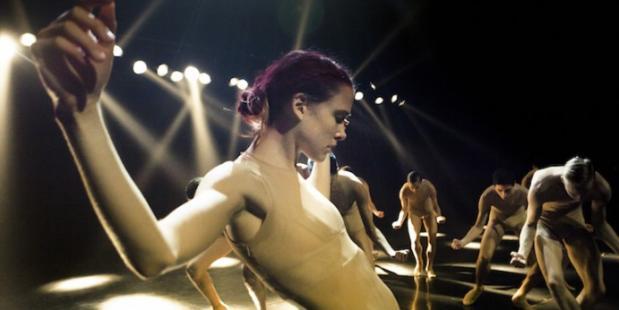 Nederlands Dans Theater wint Danskijkerprijs