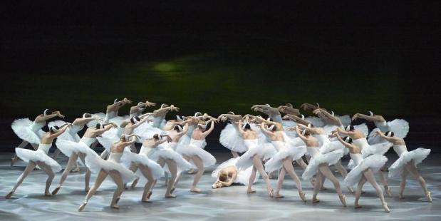 Zwanen dansen Het Zwanenmeer van Tchaikovsky