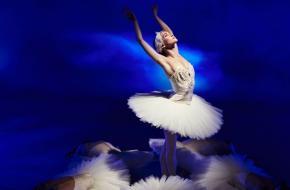 nationale opera ballet lezing zwanenmeer universiteit van amsterdam spui25