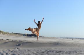 Blog Julia Zuurbier, De Dutch Don't Dance Division