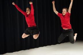 Hedendaags Schrijven over Hedendaagse Dans, Domein voor Kunstkritriek