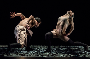 Celebration! - Tanz Luzerner Theater, bron Holland Dance Festival