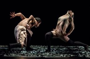 Celebration! - Tanz Luzerner Theater, bron Holland Dance Festival