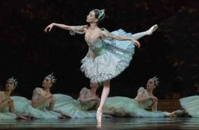 Anna Ol in The Sleeping Beauty. Foto Marc Haegeman