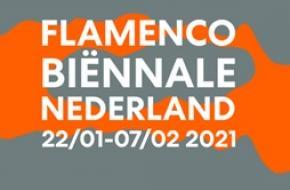 FLAMENCO BIËNNALE NEDERLAND