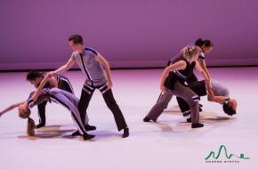 Physical dynamics, dans, flex dansstudio
