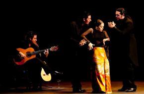 Flamencotalent Rocío Molina eenmalig in Nederland