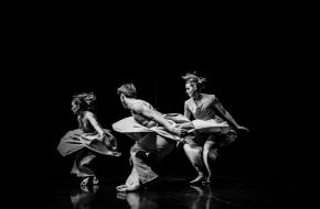 © Stichting Nishant Bhola | World of Dance