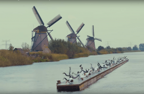 Beeld wereldrecord windmills, via YouTube