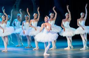 Ballerina's in Het Zwanenmeer